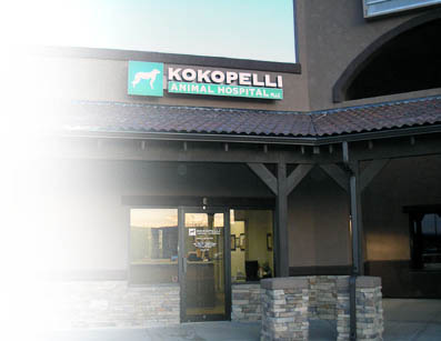 Kokopelli Animal Hospital